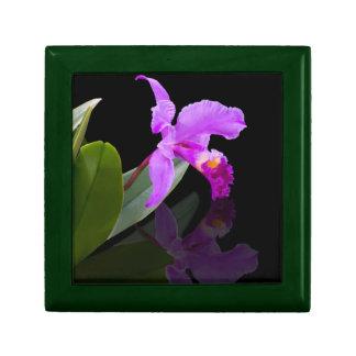 Orquídea en la caja de regalo negra