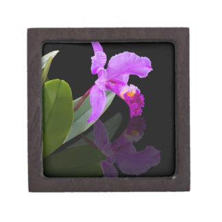 Orquídea en la caja de regalo superior negra cajas de joyas de calidad