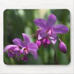 Orquídea en Mousepad Tapete De Ratones
