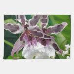 Orquídea exótica toallas de cocina
