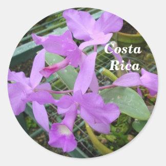 Orquídea -- Flor nacional de Costa Rica Pegatina Redonda