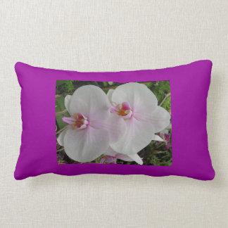 Orquídea - flor rosado (Colossians 2: 3) Cojín