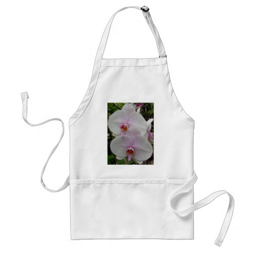 Orquídea - flor rosado (Colossians 2: 3) Delantal