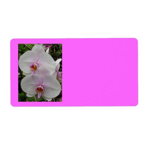 Orquídea - flor rosado (Colossians 2: 3) Etiquetas De Envío