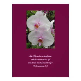 Orquídea - flor rosado (Colossians 2: 3) Folleto 21,6 X 28 Cm