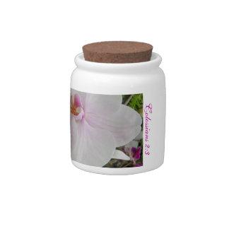 Orquídea - flor rosado (Colossians 2: 3) Plato Para Caramelo