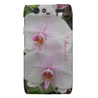 Orquídea - flor rosado (Colossians 2: 3) Motorola Droid RAZR Carcasa