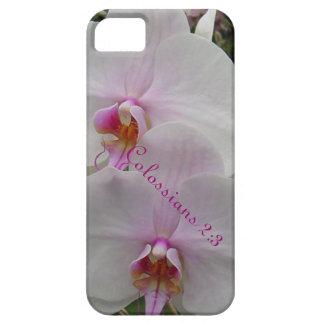 Orquídea - flor rosado (Colossians 2: 3) iPhone 5 Case-Mate Funda
