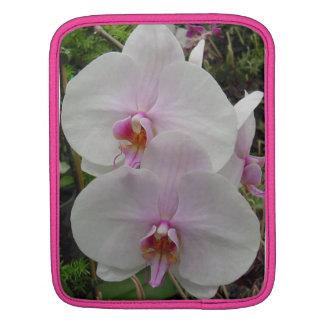 Orquídea - flor rosado (Colossians 2: 3) Fundas Para iPads