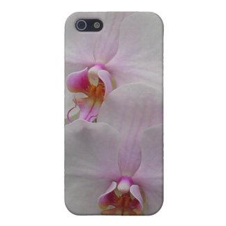 Orquídea - flor rosado (Colossians 2: 3) iPhone 5 Fundas