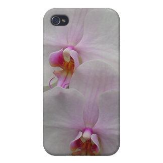 Orquídea - flor rosado (Colossians 2: 3) iPhone 4 Funda