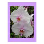 Orquídea - flor rosado (Colossians 2: 3) Invitación Personalizada