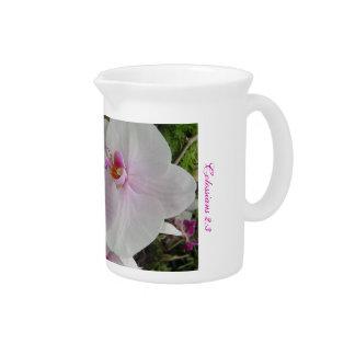 Orquídea - flor rosado (Colossians 2: 3) Jarras