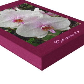 Orquídea - flor rosado (Colossians 2: 3) Lona Envuelta Para Galerías