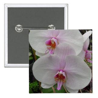 Orquídea - flor rosado (Colossians 2: 3) Pin Cuadrado