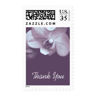 Orquídea floral 3 - la condolencia le agradece franqueo