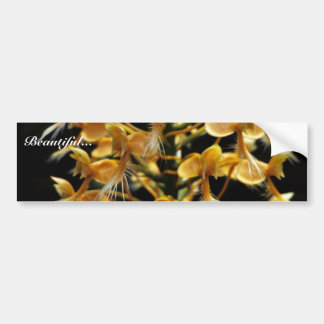 Orquídea franjada amarillo pegatina para auto