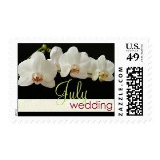 Orquídea - franqueo del boda de julio