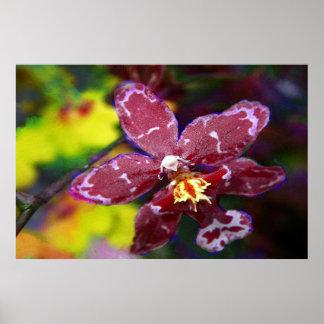 Orquídea hawaiana púrpura póster