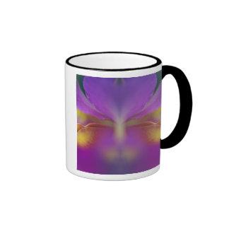 Orquídea híbrida, la Florida 2 Taza De Café