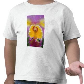 Orquídea híbrida, la Florida Camisetas