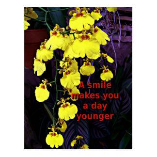 Orquídea impresionante postales