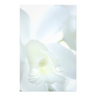 Orquídea inmóvil papeleria