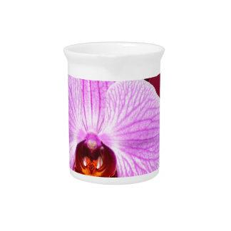 Orquídea Jarron