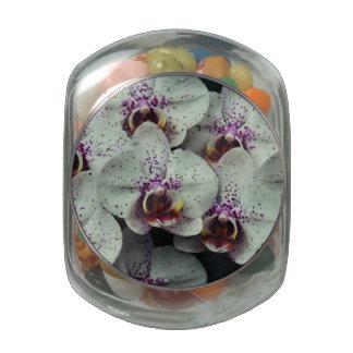 Orquídea Jarras De Cristal Jelly Bely