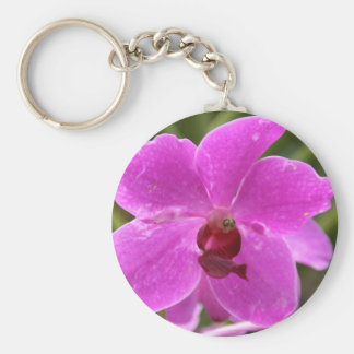 Orquídea Llavero