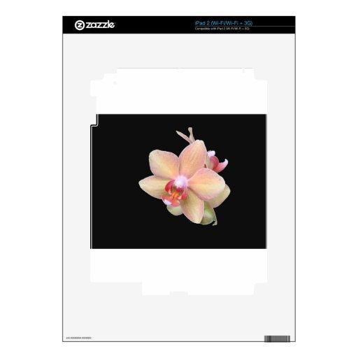 Orquídea macra skins para eliPad 2