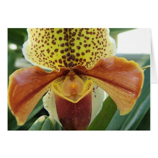 Orquídea manchada amarilla Notecard Felicitacion