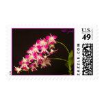 Orquídea - modificada para requisitos particulares sello