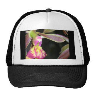orquídea oscura gorros bordados