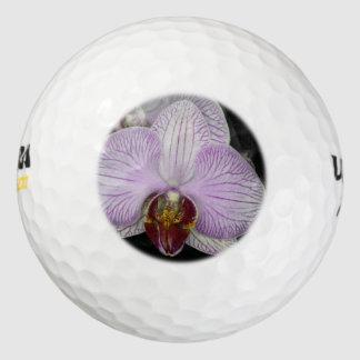Orquídea Pack De Pelotas De Golf
