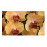 Orquídea Plantilla De Tarjeta De Negocio
