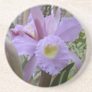 Orquídea preciosa de la lavanda posavasos diseño