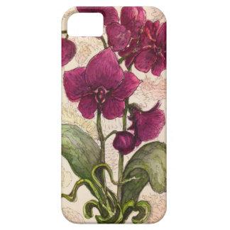 Orquídea púrpura - acople el caso del iPhone 5/5S Funda Para iPhone 5 Barely There