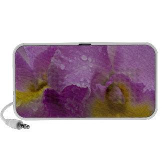 Orquídea púrpura altavoces de viaje