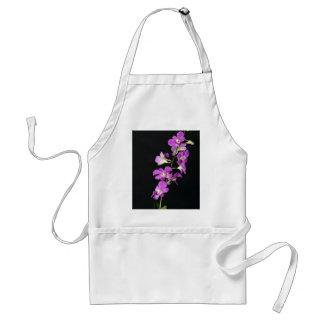 Orquídea púrpura en fondo negro delantal