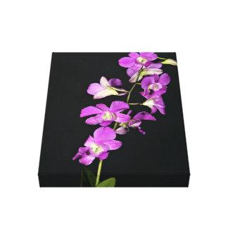 Orquídea púrpura en fondo negro impresión en lona estirada