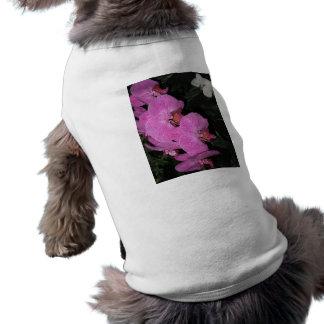 Orquídea púrpura en los jardines de Longwood, Penn Playera Sin Mangas Para Perro