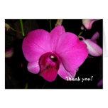 Orquídea púrpura felicitación