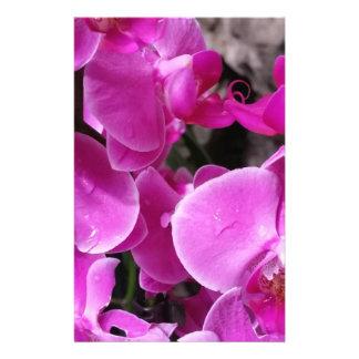 "Orquídea púrpura folleto 5.5"" x 8.5"""