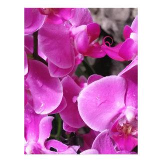 Orquídea púrpura folleto 21,6 x 28 cm