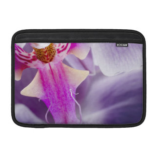Orquídea púrpura fundas macbook air
