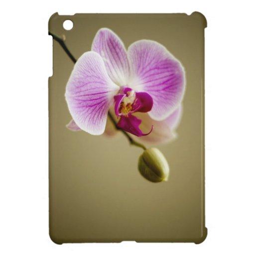 Orquídea púrpura iPad mini fundas