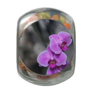 Orquídea púrpura frascos de cristal jelly belly