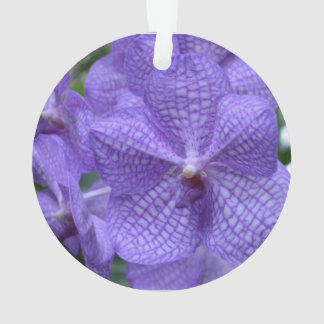 Orquídea púrpura magnífica