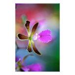 Orquídea púrpura papelería de diseño